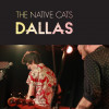 My review of Dallas, as rejected by The Guardian