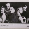 Why do you like The Go-Betweens?