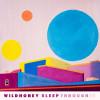 Wildhoney – Sleep Through It (Deranged/Forward!)