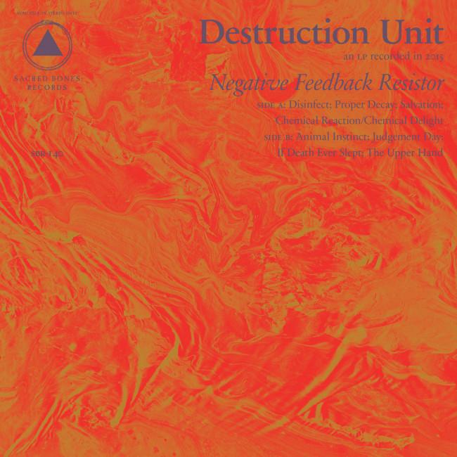 Destruction Unit – Negative Feedback Resistor (Sacred Bones)