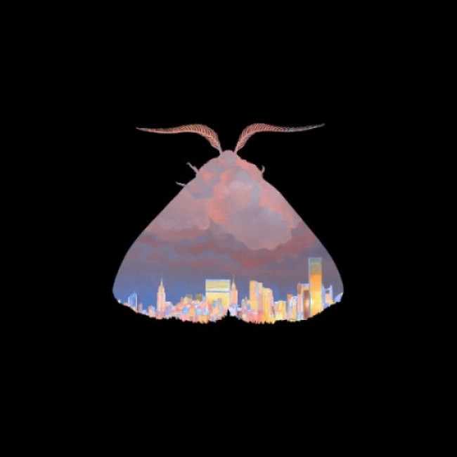 Chairlift – Moth (Columbia)