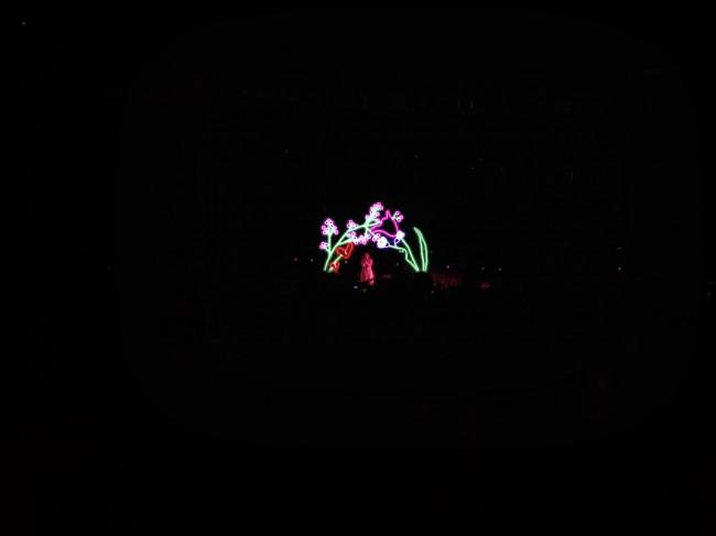 Lorde @ The Riverstage, Brisbane, 22.11.2017